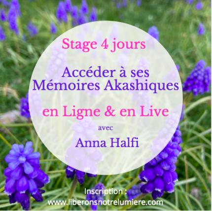 Stage en Ligne et Live Mémoires Akashiques Anna Halfi