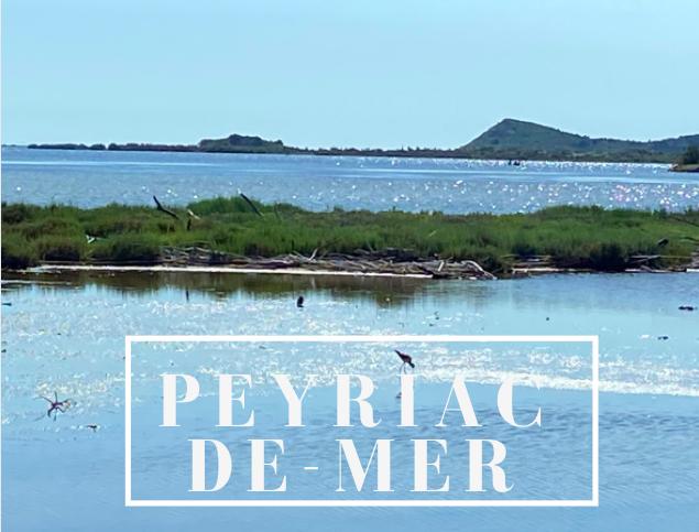Peyriac-de-mer stage