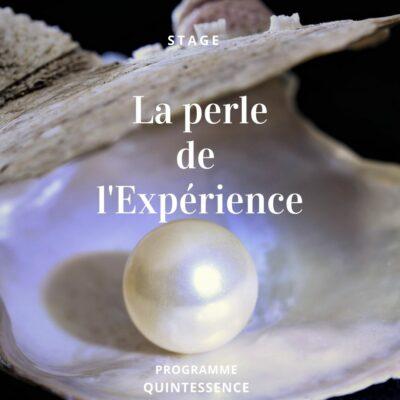 La perle de l'expérience