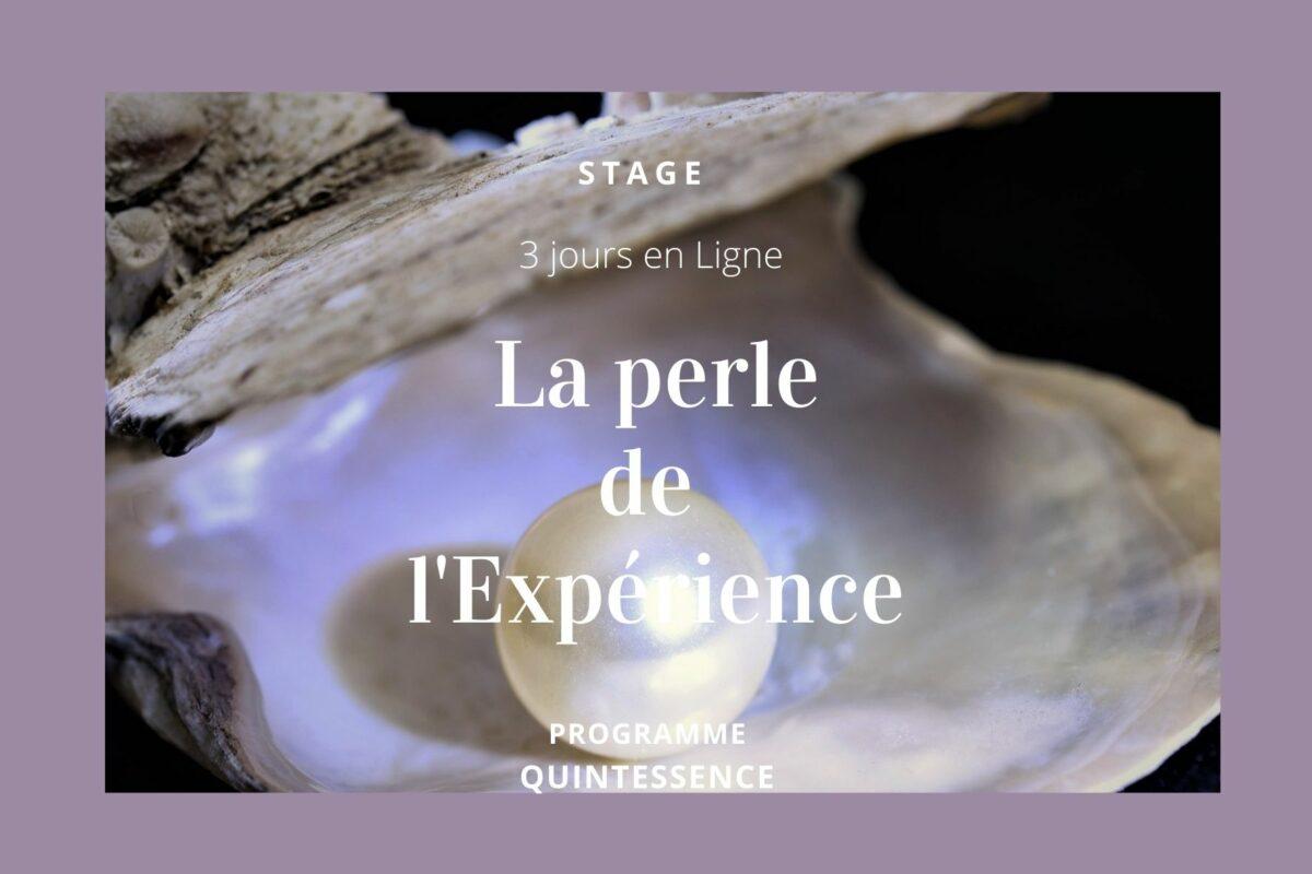 La perle de L'expérience - Stage